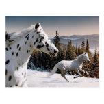 País de las maravillas del invierno postales