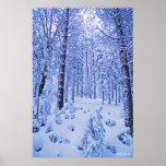 País de las maravillas del invierno poster