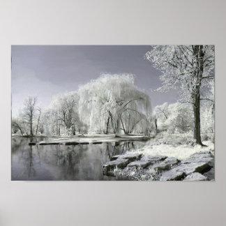 País de las maravillas del invierno póster