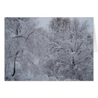 País de las maravillas del invierno felicitaciones