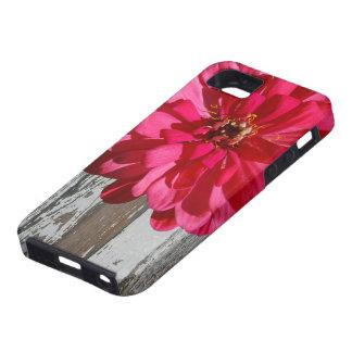País de madera viejo del Zinnia de las rosas Funda Para iPhone SE/5/5s