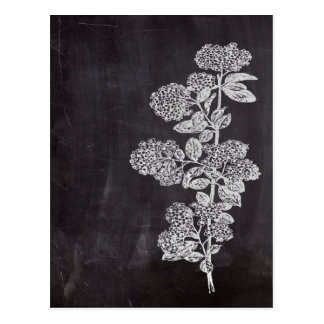 país francés floral de la pizarra elegante tarjetas postales
