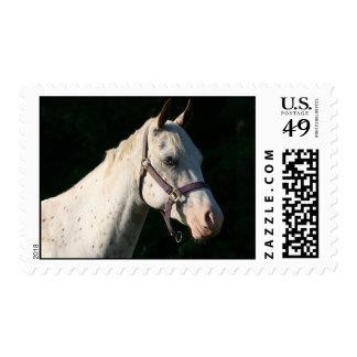 País occidental de la granja del rancho del sellos postales