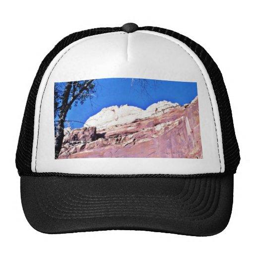 País rojo de la roca - parque nacional del filón d gorro de camionero