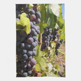 País vinícola de California Toalla De Mano
