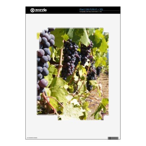 País vinícola de California Skin Para El iPad 2