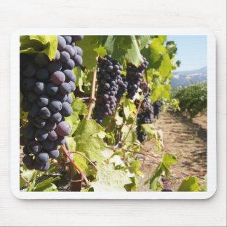 País vinícola de California Tapete De Ratón
