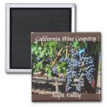 País vinícola de Napa Valley California Imán Cuadrado