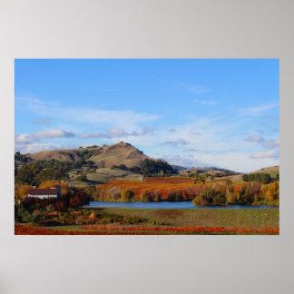 País vinícola de Napa Valley en la caída Poster