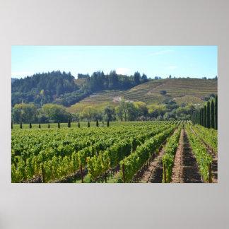 País vinícola del valle de Napa Sonoma Impresiones