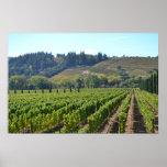 País vinícola del valle de Napa Sonoma Póster