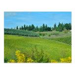 País vinícola italiano postal