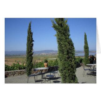 País vinícola tarjetón