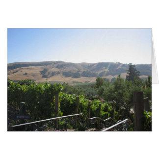 País vinícola felicitacion