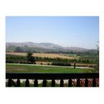 País vinícola tarjeta postal