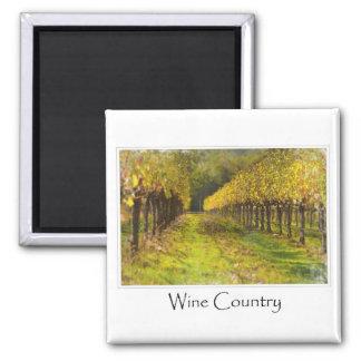 País vinícola - viñedo en otoño imán cuadrado