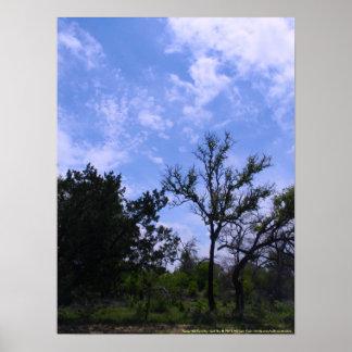 País y cielo de la colina de Tejas Poster