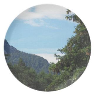 Paisaje alpino con el abeto y el bosque verdes platos de comidas