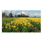 Paisaje amarillo del molino de viento del campo de tarjeta de visita