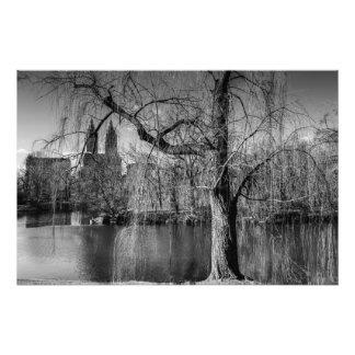 Paisaje blanco y negro de Nueva York del Central P Fotografía