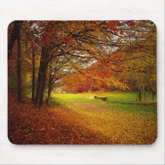 Paisaje colorido del otoño mousepad