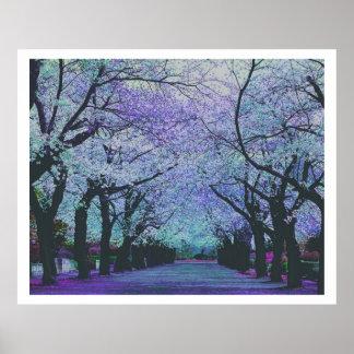 Paisaje colorido del parque del flor de la póster