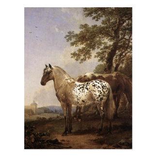 Paisaje con dos caballos tarjetas postales