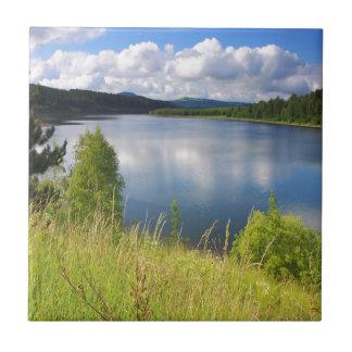 Paisaje con el lago azulejos ceramicos