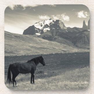 Paisaje con los caballos 2 posavasos