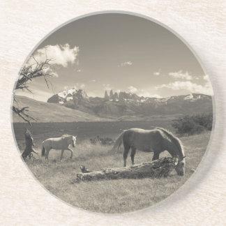 Paisaje con los caballos posavasos personalizados