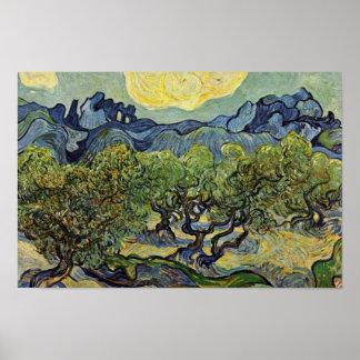 Paisaje con los olivos de Vincent van Gogh Póster