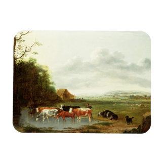 Paisaje con un ganadero y el ganado (aceite en can imán flexible