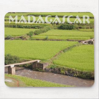 Paisaje de arrozales a Madagascar Mouse Pads