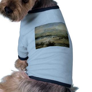 Paisaje de Karl Bodmer- con el búfalo en Missouri Camisas De Perritos