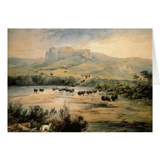 Paisaje de Karl Bodmer- con el búfalo en Missouri Tarjeta