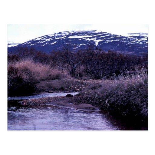 Paisaje de la corriente y de la montaña postales