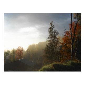 Paisaje de la escena de los árboles del tarjeta postal