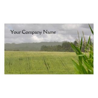 Paisaje de la granja con los campos del maíz tarjetas de visita