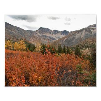 Paisaje de la montaña de la caída fotografías