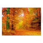 Paisaje de la multa de la naturaleza del otoño de tarjeta de felicitación