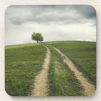 Paisaje de la naturaleza del camino del árbol posavaso