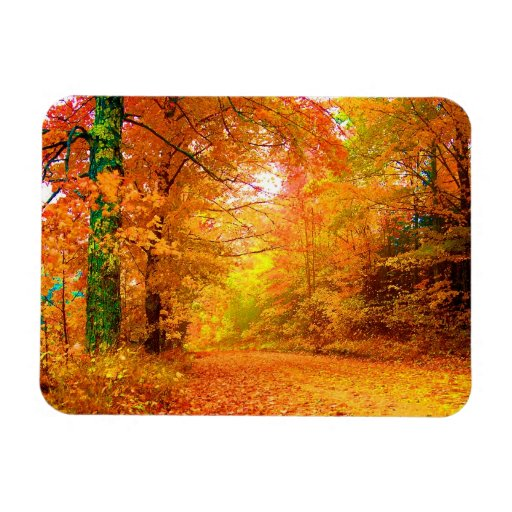Paisaje de la naturaleza del otoño de Vermont Imán Flexible