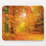 Paisaje de la naturaleza del otoño de Vermont Tapetes De Ratones