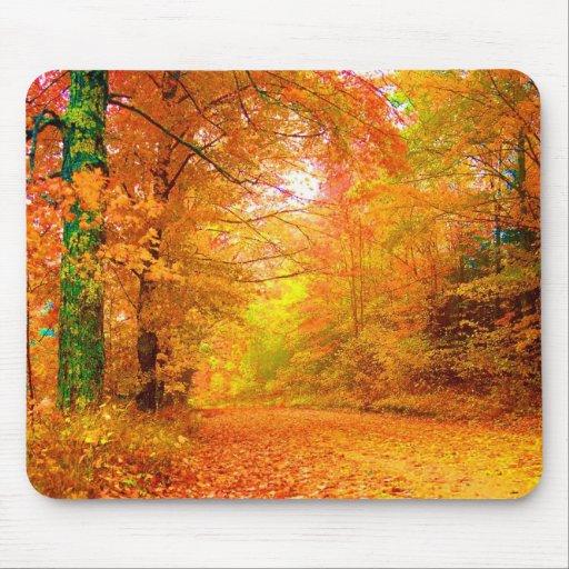 Paisaje de la naturaleza del otoño de Vermont Tapete De Raton