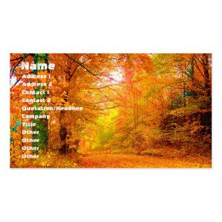Paisaje de la naturaleza del otoño de Vermont Tarjetas De Negocios
