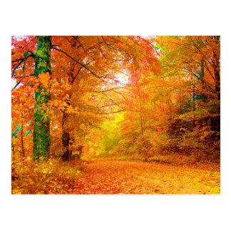 Paisaje de la naturaleza del otoño de Vermont Tarjetas Postales