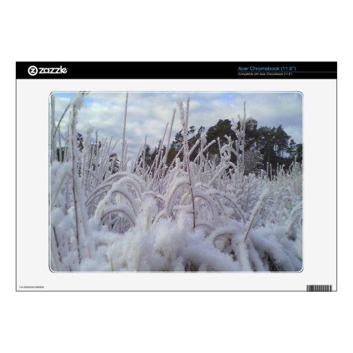 paisaje de la nieve skins para acer chromebook