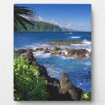 Paisaje de la playa de Hawaii Placa De Plastico