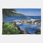 Paisaje de la playa de Hawaii Toallas De Mano