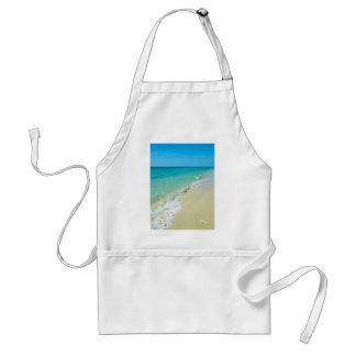 Paisaje de la playa delantal